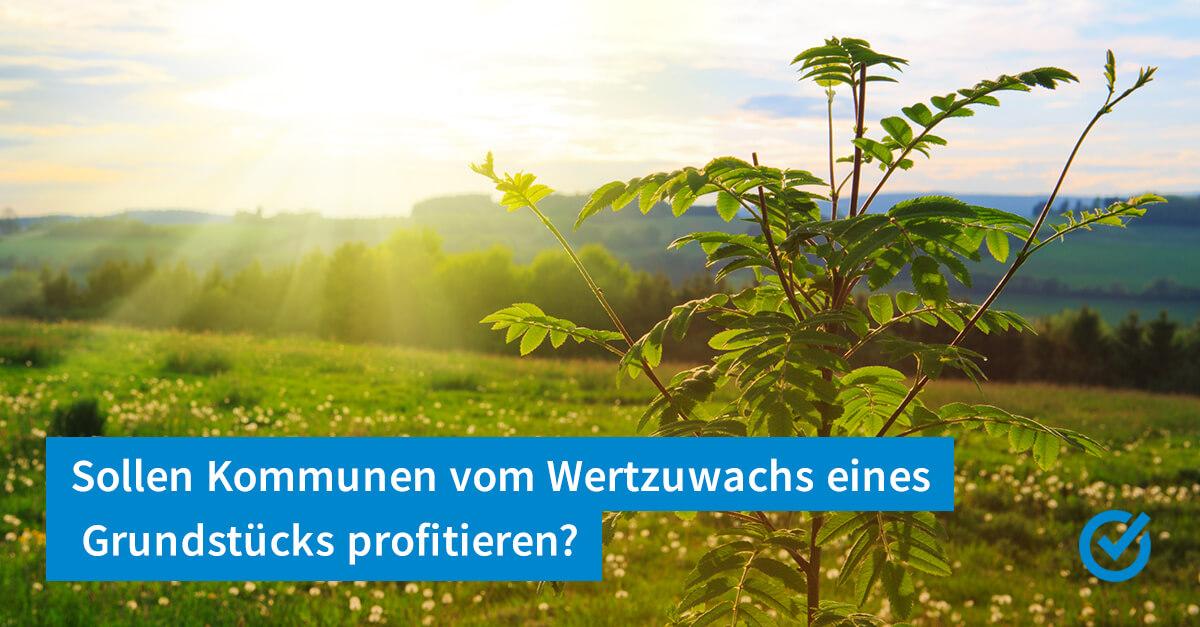 Bodenwertzuwachssteuer - was soll das denn nun wieder sein?