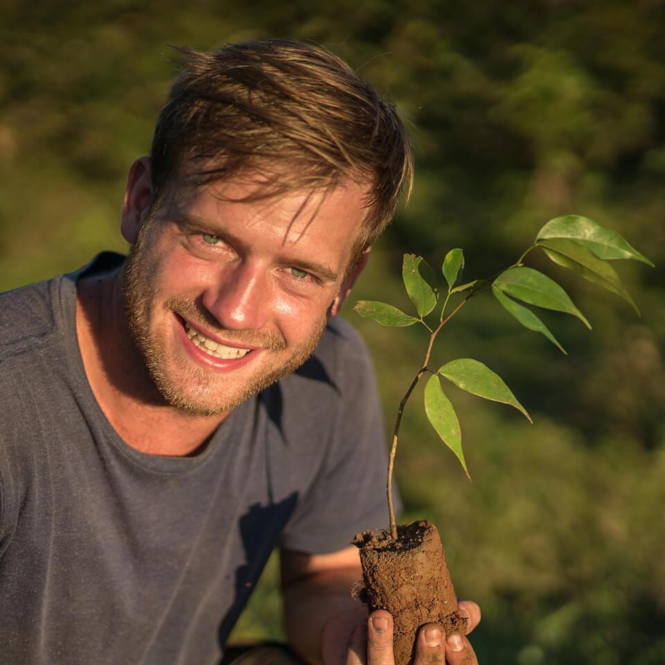 Steuer jetzt machen - und damit einen Baum spenden